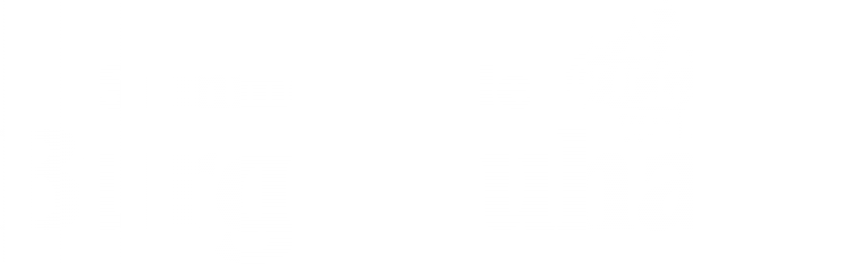 Logo_Sommerspiele_White.png